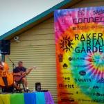 Rakers trial gardens Celosia